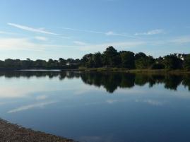 Alverstoke Lake